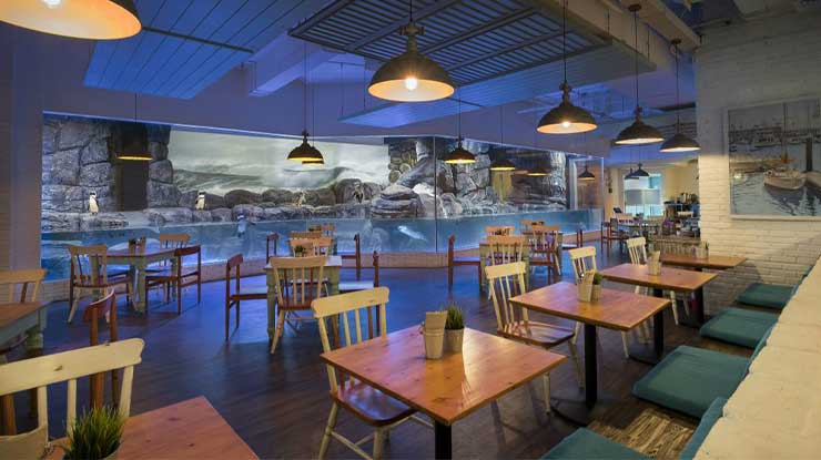 Jakarta aquarium Pingoo Restaurant