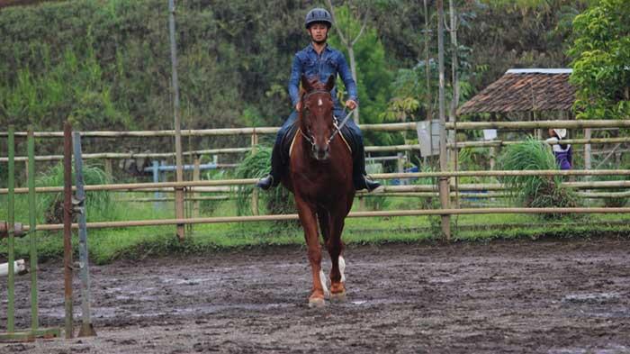 Lembang Park Equastrian