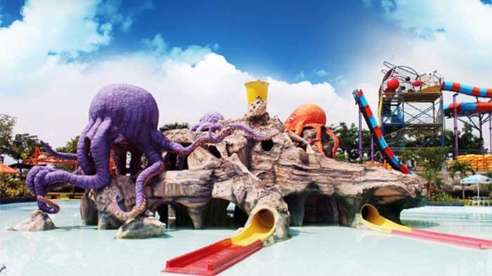Octopus Splash Pool Water Kingdom