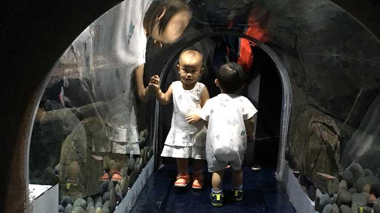 Otter Tunel Jakarta Aquarium