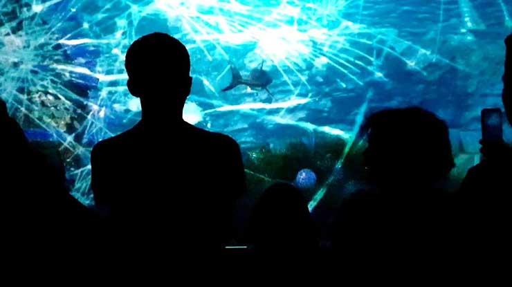 Sea Explor Jakarta Aquarium